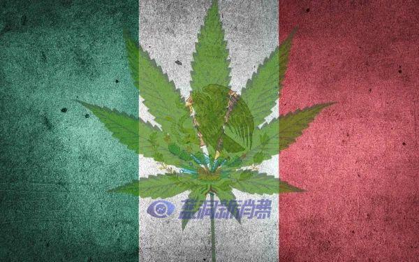 刚刚,墨西哥正式通过大麻合法化,成为全球第三个大麻完全合法化的国家!