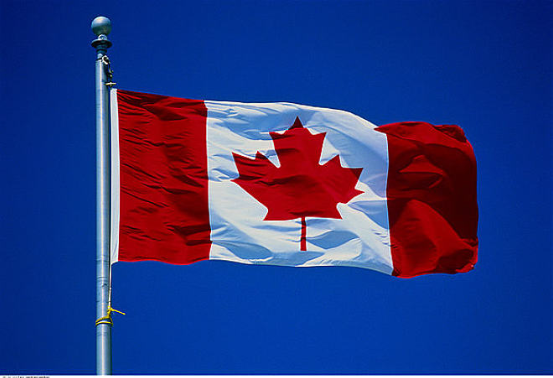 加拿大卫生部正推动电子烟口味禁令,除烟草及薄荷以外的口味禁止销售
